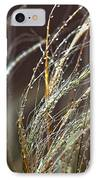 Beads Of Water On Sea Grass IPhone Case by Artist and Photographer Laura Wrede