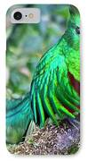 Beautiful Quetzal 4 IPhone Case by Heiko Koehrer-Wagner