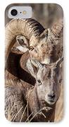 Big Horn Little Horn IPhone Case by Kevin  Dietrich