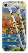 Birches By The Lake IPhone Case by Richard T Pranke
