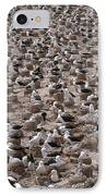 Black-browed Albatross Nesting Colony IPhone Case by Art Wolfe