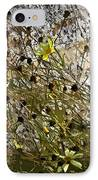 Black-eyed Susan On Rocks IPhone Case by Patricia Keith