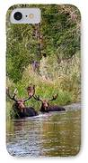 Bull Moose Summertime Spa IPhone Case by Timothy Flanigan