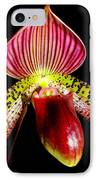 Burgundy Lady Slipper IPhone Case by Karen Wiles