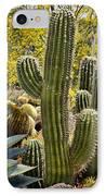Cacti Habitat IPhone Case by Kelley King