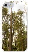 Cathedral Forest IPhone Case by Artist and Photographer Laura Wrede