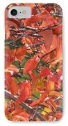 Crabapple IPhone Case by Kimberly Maxwell Grantier