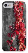 Creeper On Pole Desaturated IPhone Case by Teresa Mucha
