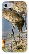 Enjoying The Water IPhone Case by Zina Stromberg