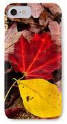 Fallen IPhone Case by Karol Livote