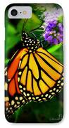 Food For Flight IPhone Case by Lainie Wrightson