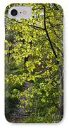 Forest Path IPhone Case by Elena Elisseeva
