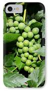 Grapes On The Vine IPhone Case by Carol Groenen
