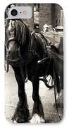 Guinness Horse IPhone Case by John Rizzuto