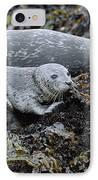 Harbor Seal Pup Resting IPhone Case by Suzi Eszterhas