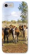 Herd Of Brahman Cattle In Outback Queensland IPhone Case by Colin and Linda McKie