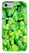 Ivy IPhone Case by Les Cunliffe