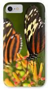 Large Tiger Butterflies IPhone Case by Elena Elisseeva