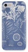 Laurencia Concinna And Hypnea Musciformis IPhone Case by Aged Pixel