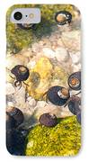 Monterey Bay Tide Pools IPhone Case by Artist and Photographer Laura Wrede