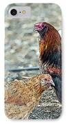 Mr. Rooster Talking With The Chickens IPhone Case by Artist and Photographer Laura Wrede