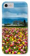 Oregon Tulip Farm - Willamette Valley IPhone Case by Gary Whitton