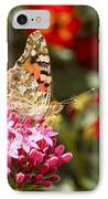 Painted Lady Butterfly IPhone Case by Eyal Bartov