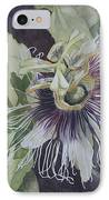 Panama Passion IPhone Case by Jan Lawnikanis