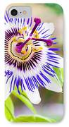 Passiflora Or Passion Flower IPhone Case by Semmick Photo