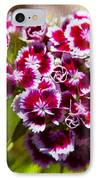 Pink And White Carnations IPhone Case by Omaste Witkowski