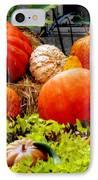 Pumpkin Harvest IPhone Case by Karen Wiles