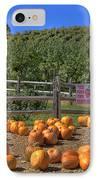 Pumpkins On The Farm IPhone Case by Joann Vitali