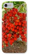 Red Palm Tree Fruit IPhone Case by Kirsten Giving