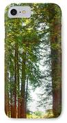 Redwood Wall Mural Panel 2 IPhone Case by Artist and Photographer Laura Wrede