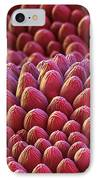 Rose Petal Surface Sem IPhone Case by Eye of Science