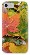 Seasonal Mix IPhone Case by Rona Black