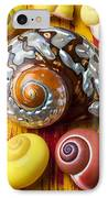 Six Snails Shells IPhone Case by Garry Gay