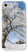 Snow Covered Winter Oak Tree IPhone Case by Tim Gainey