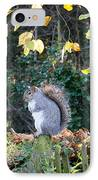 Squirrel Perched IPhone Case by Matt Malloy