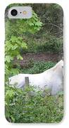 Stallion On Independence Day IPhone Case by Patricia Keller