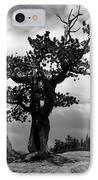 Storm Tree IPhone Case by Tranquil Light  Photography