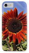 Sunflower Sky IPhone Case by Kerri Mortenson