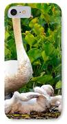Swan Song IPhone Case by Frozen in Time Fine Art Photography