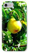 The Ripe Pear IPhone Case by Kay Gilley