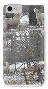 The Stallion Lives In The Country IPhone Case by Patricia Keller