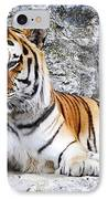 The Tiger IPhone Case by Jelena Jovanovic