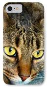 Tiger Time IPhone Case by Art Dingo