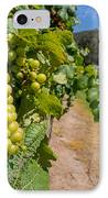 Vineyard Grapes IPhone Case by Justin Woodhouse