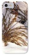 Winter Weeds IPhone Case by Kae Cheatham