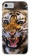 Bengal Tiger (panthera Tigris) IPhone Case by Louise Murray